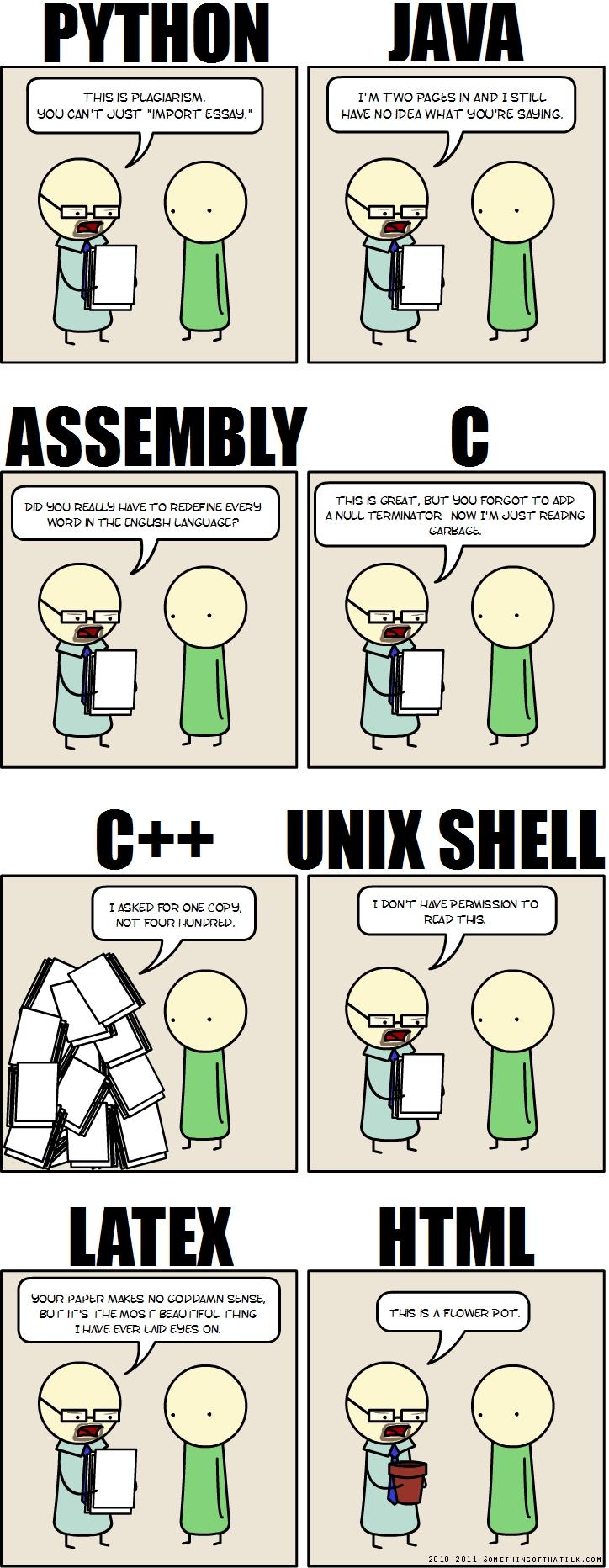 computer programmer essay