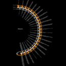 "The ""Memento"" Timeline, Visualized"