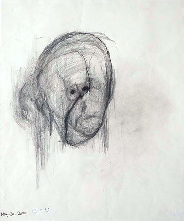 alzheimers_self_portraits_9