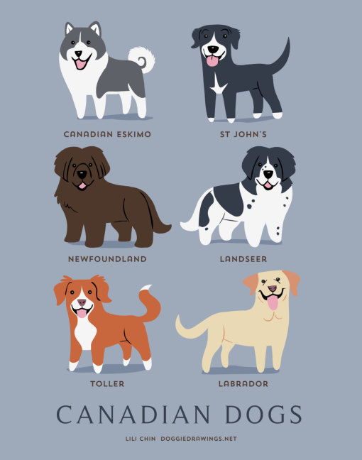 dogs_of_the_world_canadian