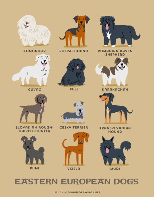 dogs_of_the_world_eastern_european