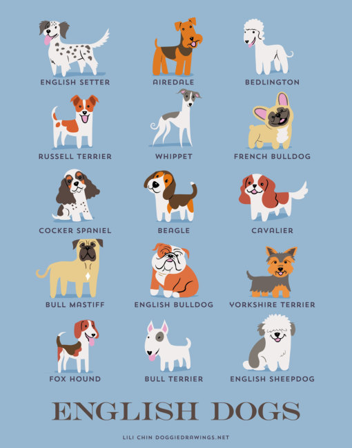 dogs_of_the_world_english