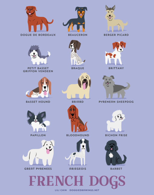 dogs_of_the_world_french