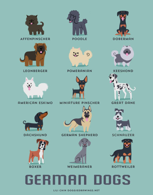 dogs_of_the_world_german