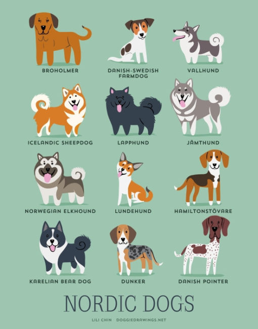 dogs_of_the_world_nordic