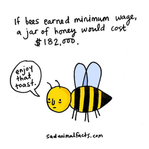 sad_animal_facts_bees
