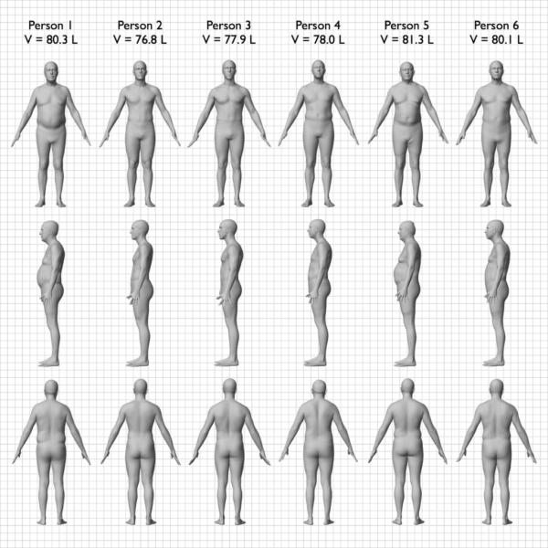 same_bmi_different_body_compositions