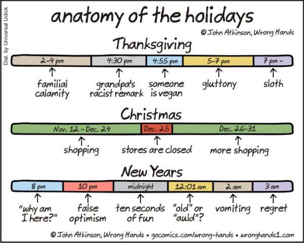 anatomy-of-the-holidays
