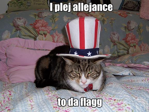lolcats_pledge_allegiance1.jpg