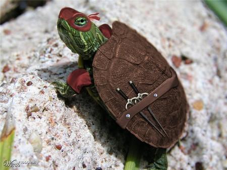 Real-Life Ninja Turtle [Daily Dose of Cute]